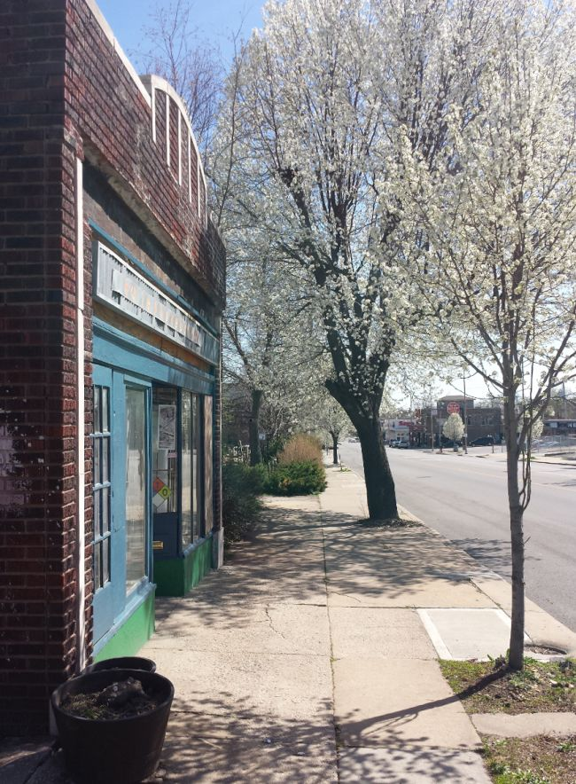 Telephonebooth Gallery front with tree in bloom